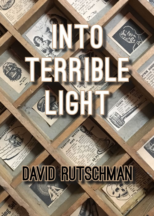 Cover of INTO TERRIBLE LIGHT by David Rutschman